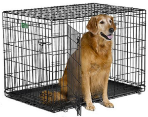 Double-door folding dog crate