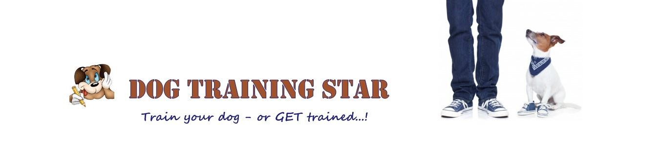 Dog Training Star header image